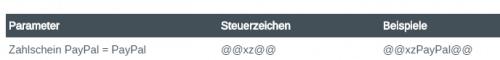 Screenshot von den Parametern des Zahlscheins - Blogbeitrag Rechnungen automatisch senden