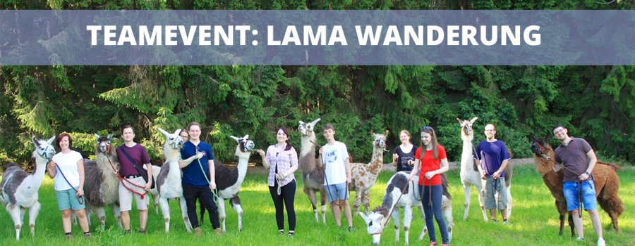 Lama Wanderung als Teambuilding Maßnahme - Teamevent World-of-edv
